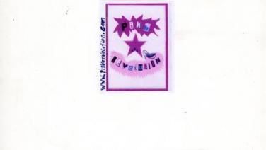 Pinkrevolution Queer Soli Party   www.pink-revolution.com